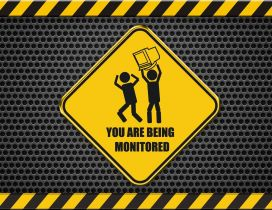 Funny wallpaper - You are being monitored
