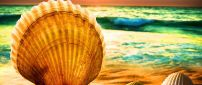 Big shell at the seaside - wonderful summer wallpaper