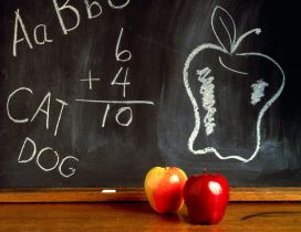 Apple and drawings on the blackboard - Back to school