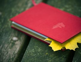 Autumn leaf in a notebook - Wonderful memories