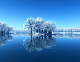 Small island full with frozen trees - Mirror in the lake
