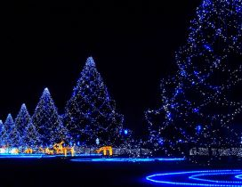 Wonderful blue Christmas lights in the town
