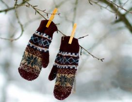Gloves hanging in tree - Winter games