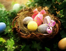Easter basket full with coloured eggs with ribbon