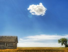 Hot sunshine over the wooden cottage - One fluffy cloud