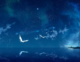 White birds flying over the blue ocean water - Magic mirror