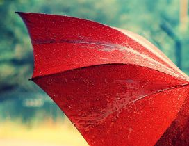 Macro red umbrella in the rain - HD wallpaper