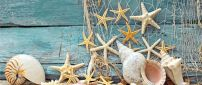Seashells and starfish on the boat - Summer Holiday at sea