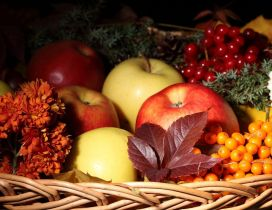 Autumn basket full with fruits - HD wallpaper