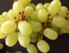 Macro Big white grape - Delicious fruit of Autumn season