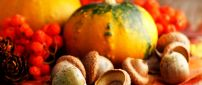 Acorns and pumpkins - Orange wallpaper Halloween night