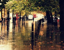 Water on the street - Rainy Autumn day in the park