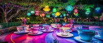 Artistic and magic world on Disneyland Paris -Colorfull cups