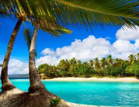 Relaxing place for a special summer holiday -Tropical island
