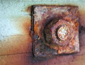 Old and rusty piece of iron - screw in wood HD wallpaper