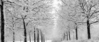 White path full with snow in the park - HD wallpaper