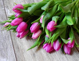 Bouquet with pink tulips - Wonderful spring season