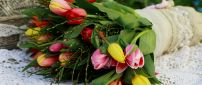 Wonderful spring flowers - Colorful tulips in a bouquet