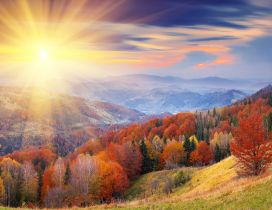 Sun is upon a wonderful Autumn day - Beautiful landscape