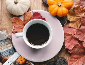 Dark coffee for Autumn photo - biscuits and pumpkins