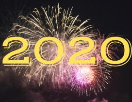 Fireworks at midnight - Party New year 2020