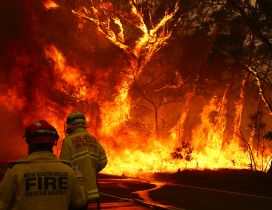 Firemen helps Australia from fire - HD wallpaper