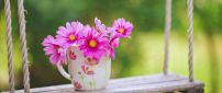 Pink flowers in a cup of coffee - Spring morning time