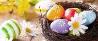 Bird basket full with Easter colourful eggs - Happy Holiday