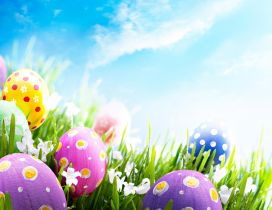 Good morning wonderful spring Easter Holiday - Color eggs
