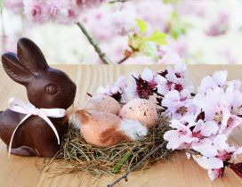 Easter eggs in a bird house - Bunny and flowers