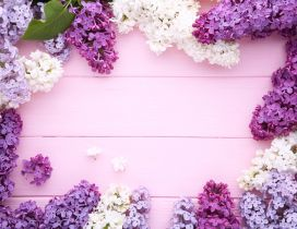 Wonderful photo frame made of beautiful spring Lilac flowers