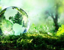 Earth from crystal globe - Nature is very fragile