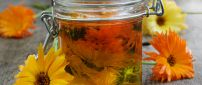 Infused flowers in olive oil - Recipe for migraine