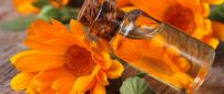 Gold liquid from Calendula Oil - Wonderful spring perfume