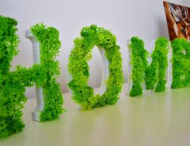 Home - Beautiful word made from lichens - Green moss picture