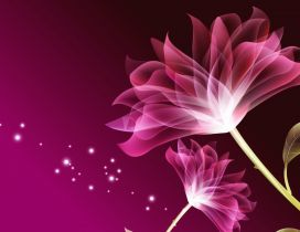Two pink flowers - Beauty wallpaper digital art design