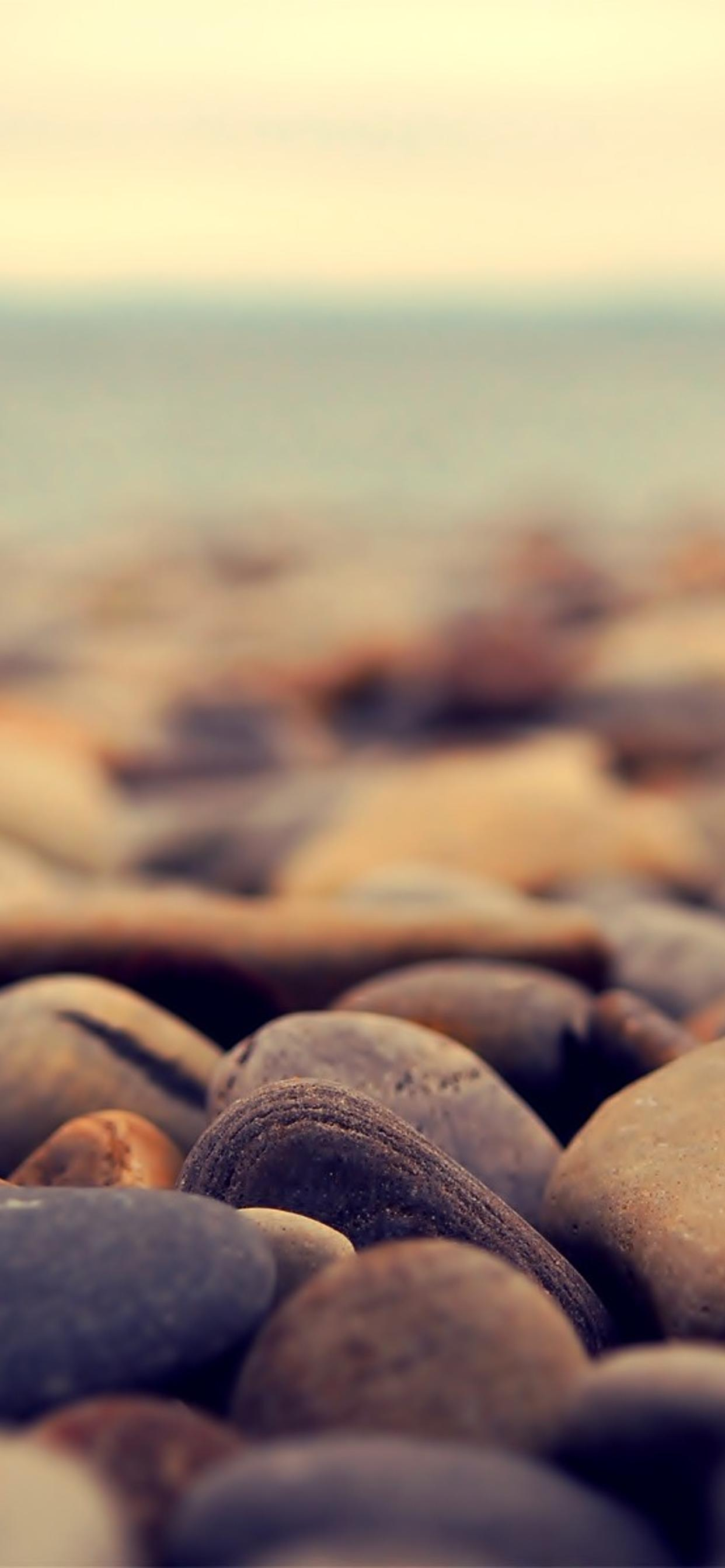 Beautiful Rocks From The Beach Macro Hd Wallpaper