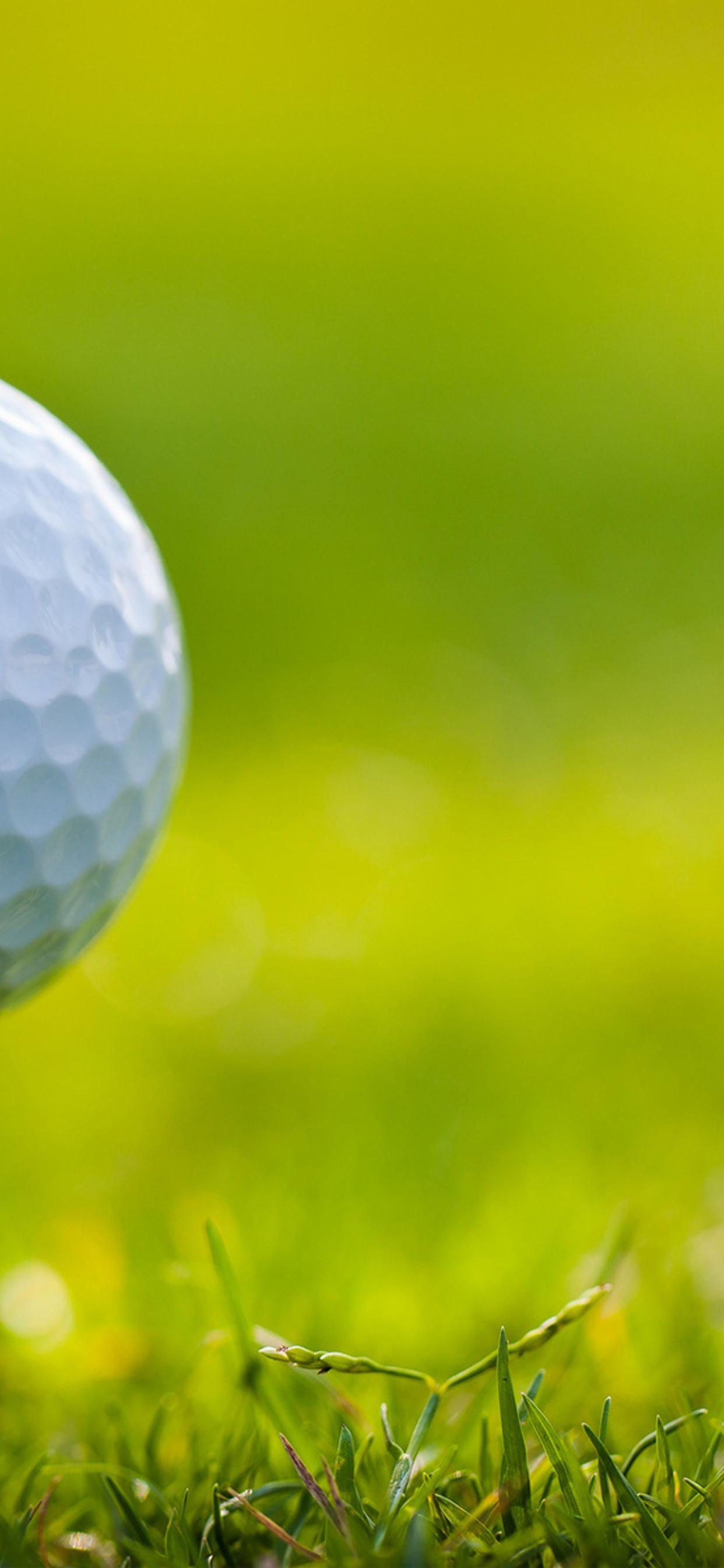 Small Golf Ball On The Green Field Hd Sport Wallpaper